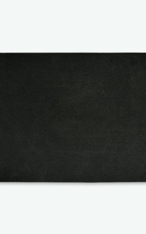 0099-0419c
